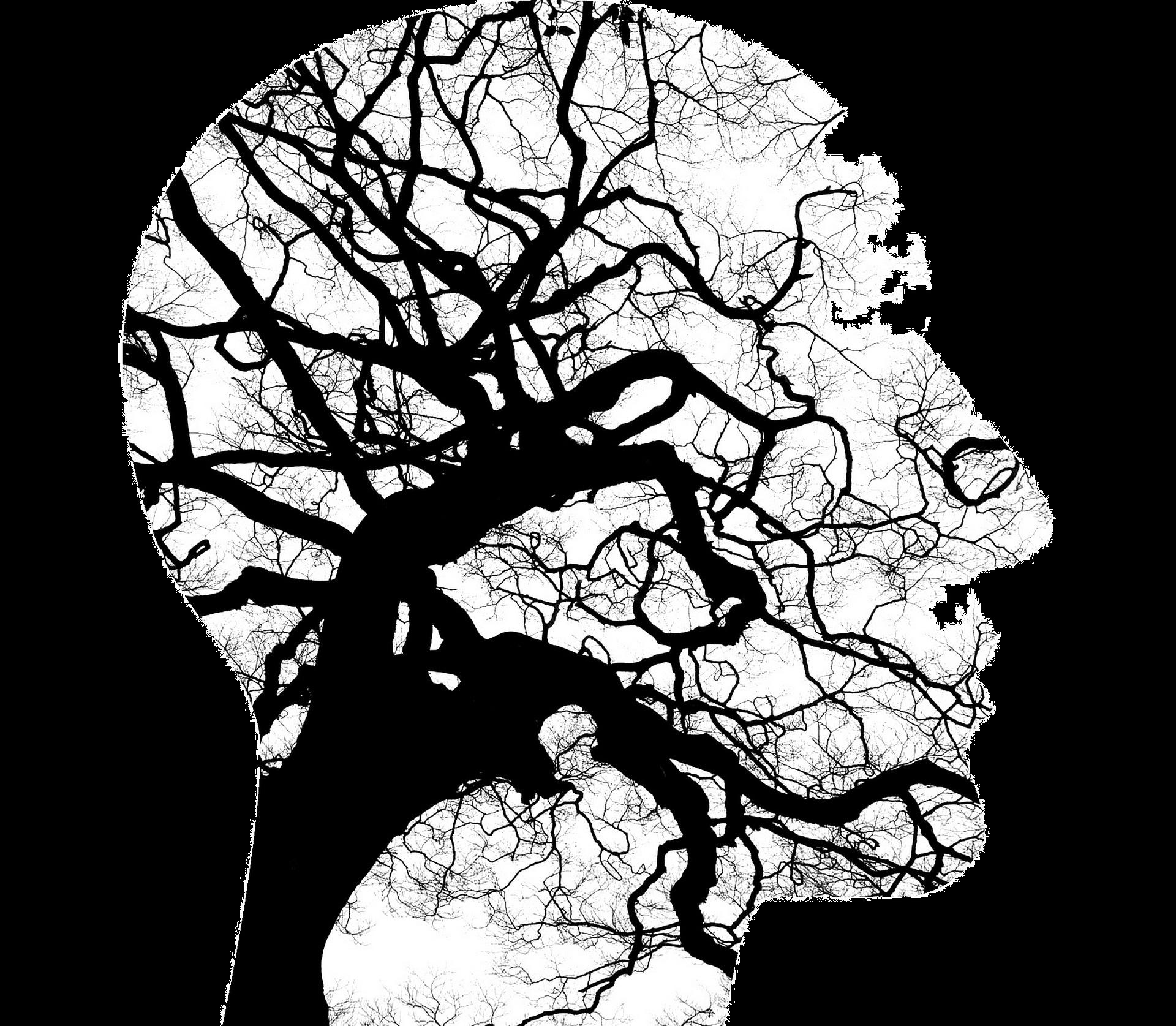 Ország-pszichiátria