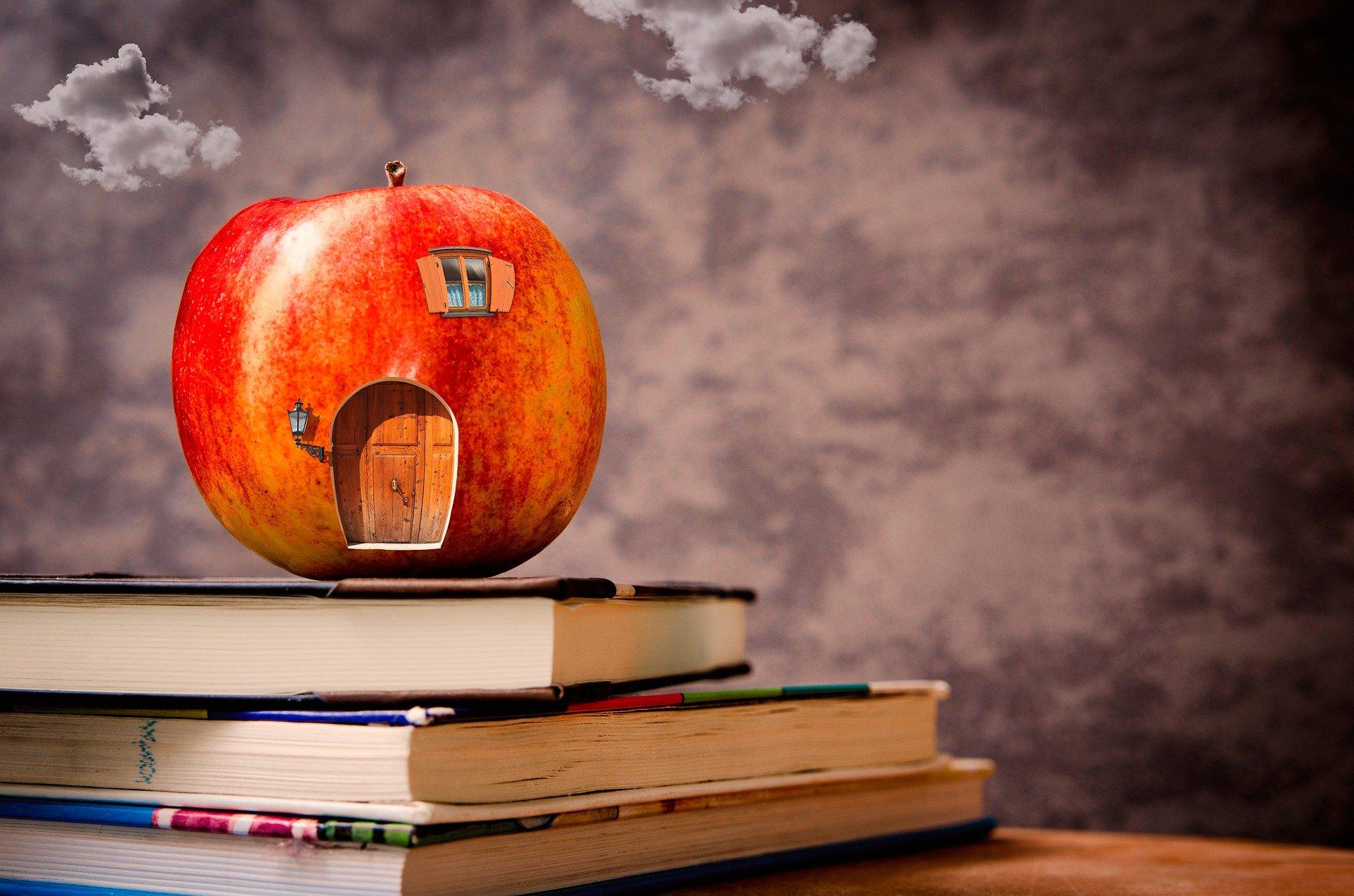 Iskolapélda – Iskola és társadalom